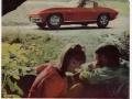 vintagecar-ads-1960s-50