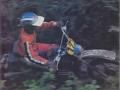 american-motorcycle-3