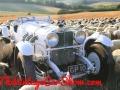 1929-mercedes-benz-ss-rennsport-worksbody