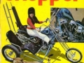 outlaw-biker-11