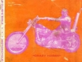 outlaw-biker-2
