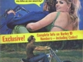 outlaw-biker