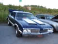port ewen ny car show (5)
