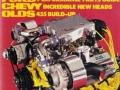 the vintage car show (13)