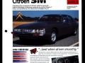 100 classic car  (13)
