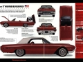 100 classic car  (19)