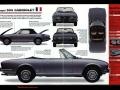 100 classic car  (4)