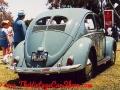 1950bug
