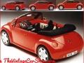 sog2000_beetle-3