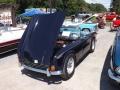 Woodstock NY car show (46)